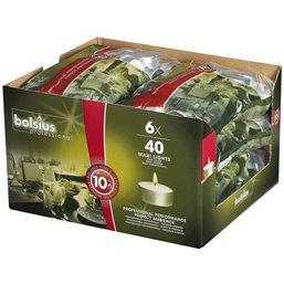 Tea lights Bolsius 10 Hours - Horecavoordeel.com