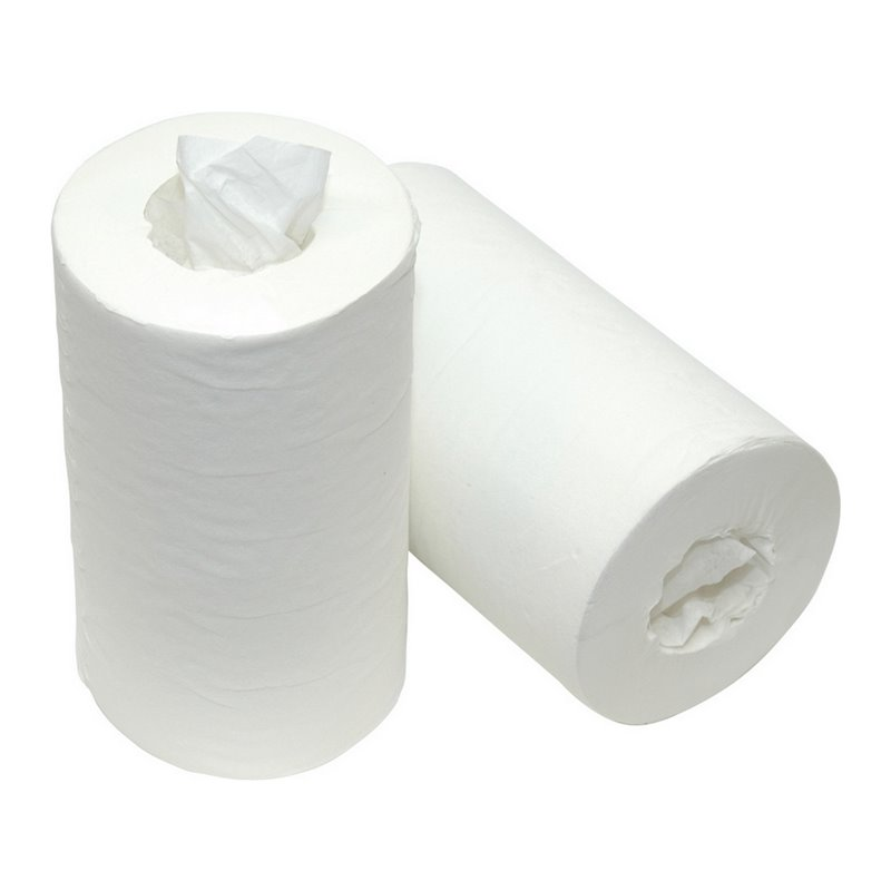 Cleaning Roll Mini Without Core (EM) 1-layer White 22cmx120m - Horecavoordeel.com