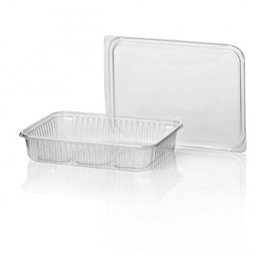 Microwave Meal containers - Bins 180 Series 500cc Rectangle PP Transparent
