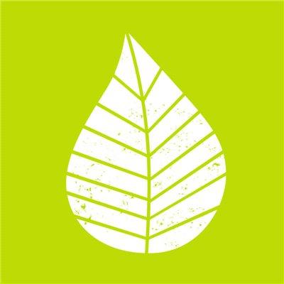 """Servetten 3-Laags Groen """"Graphic Leaves"""" 1/4 vouw 250 x 250mm -horecavoordeel.com-"""