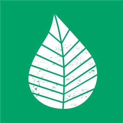 """Servetten 3-Laags Groen """"Graphic Leaves"""" 1/4 vouw 330 x 330mm -horecavoordeel.com-"""